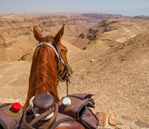 adventure-in-israel