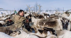 nenets-expedition-siberia