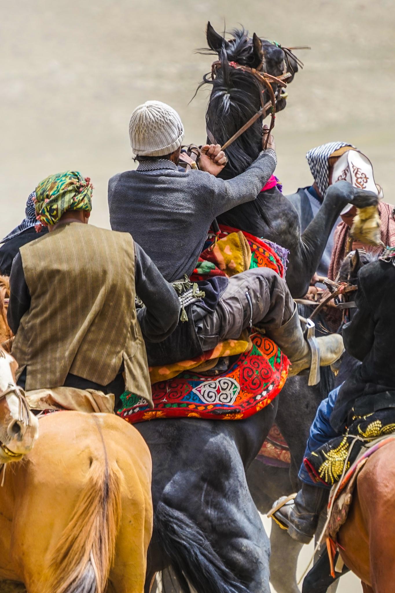 During a game of buzkashi, Wakhi men rear their horses