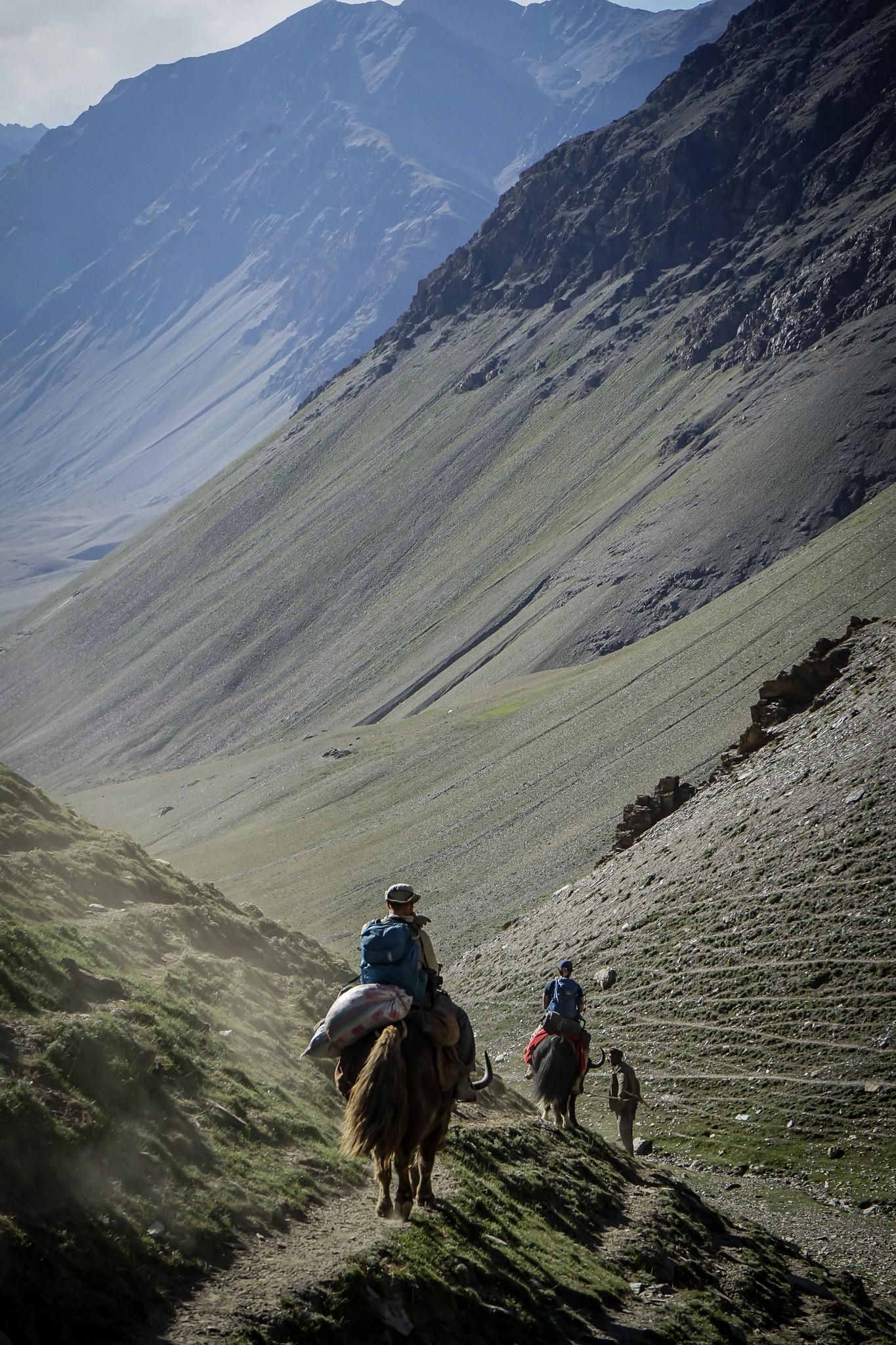 just as comfortable trekking on foot as it is on horseback